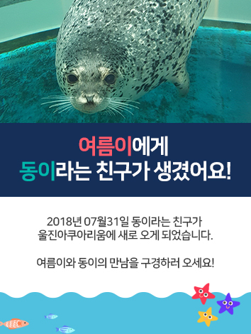 180830-새로온-친구-동이-팝업.jpg
